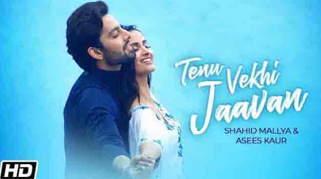 Tenu Vekhi Jaavan Lyrics in Hindi and English